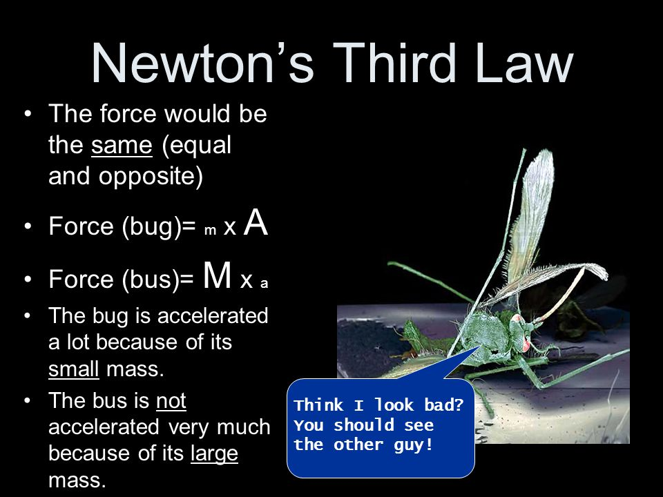Newton's Third Law The force would be the same (equal and opposite)