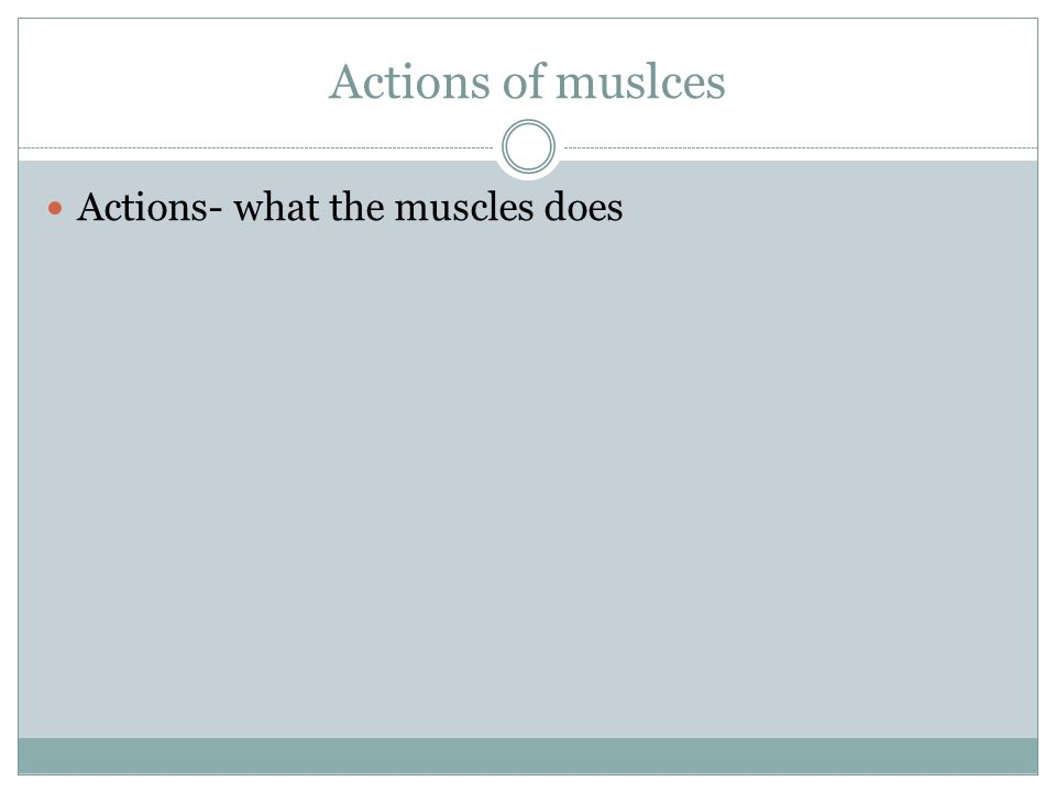 Actions of muslces Actions- what the muscles does