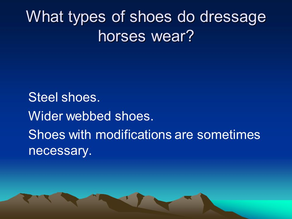 What types of shoes do dressage horses wear