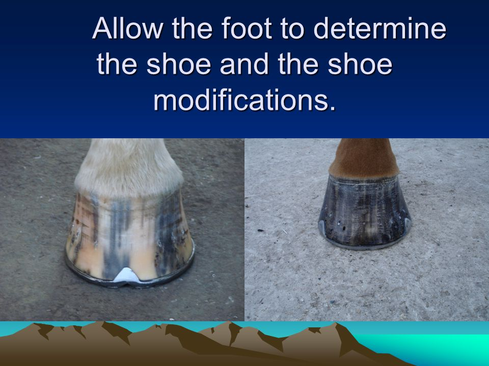Allow the foot to determine the shoe and the shoe modifications.