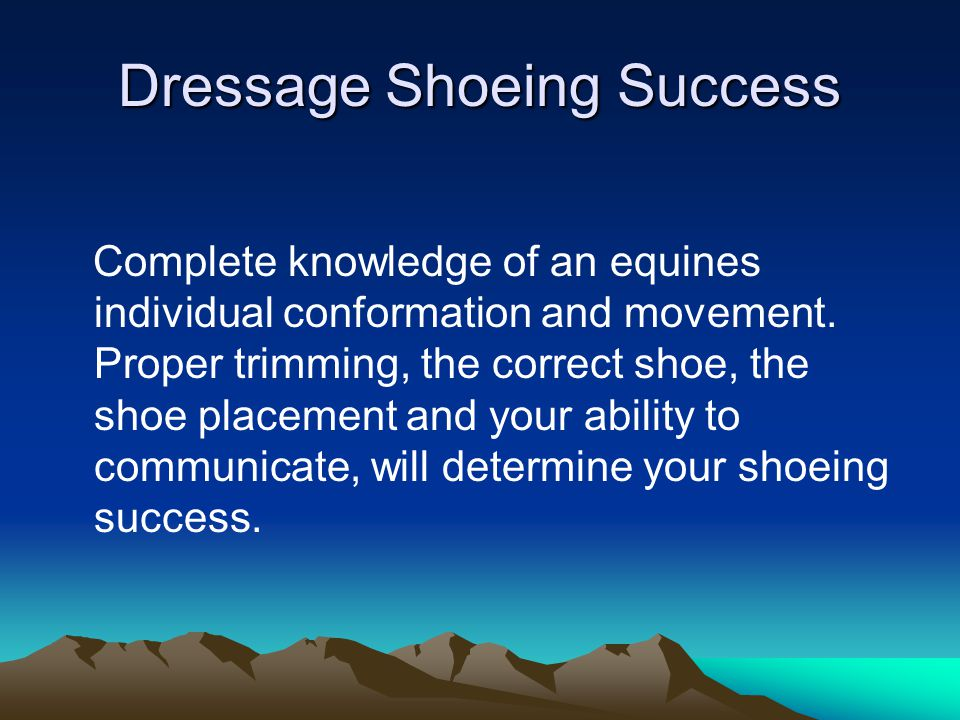 Dressage Shoeing Success