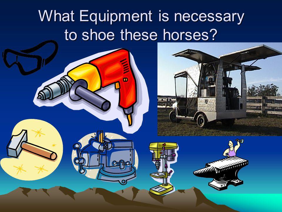 What Equipment is necessary to shoe these horses