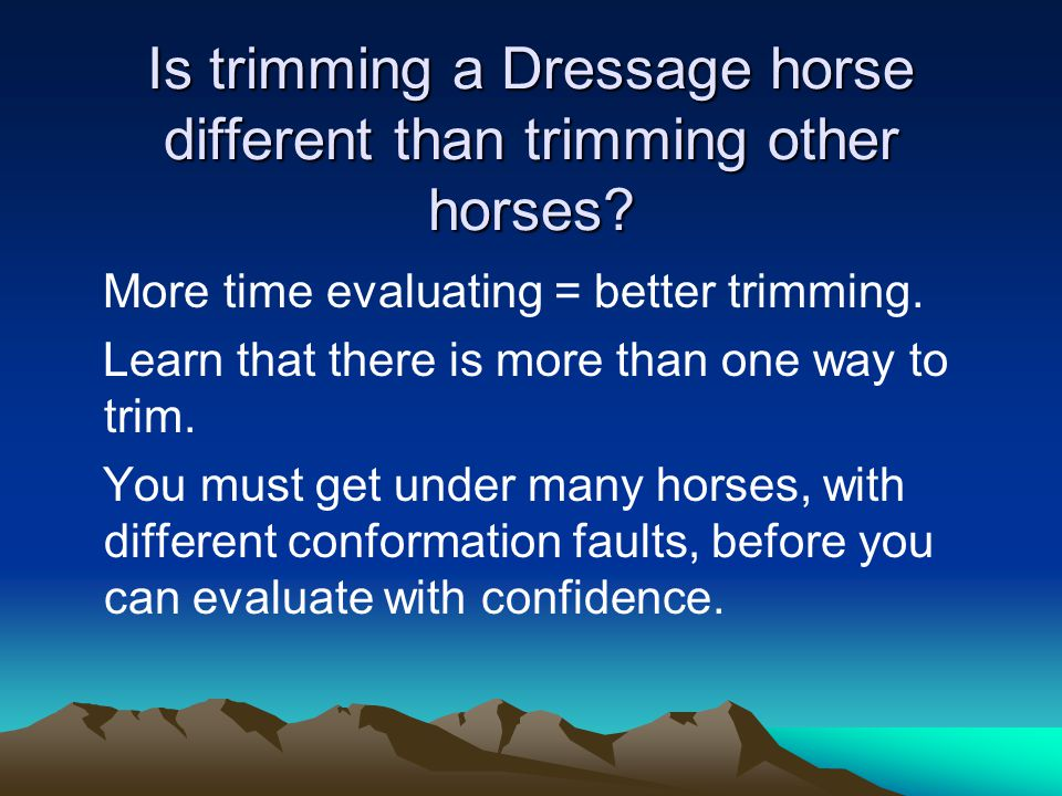 Is trimming a Dressage horse different than trimming other horses