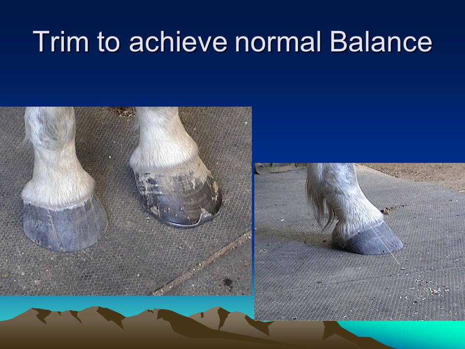 Trim to achieve normal Balance