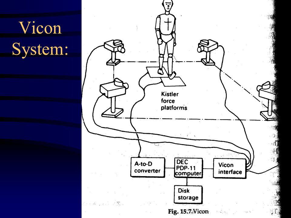 Vicon System: