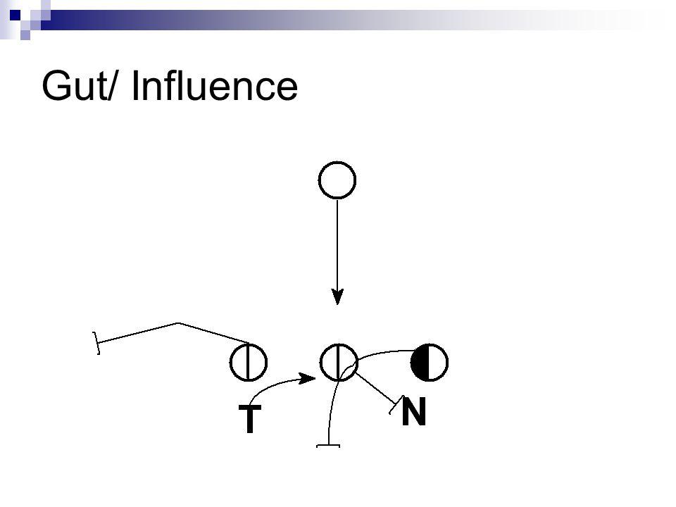 Gut/ Influence