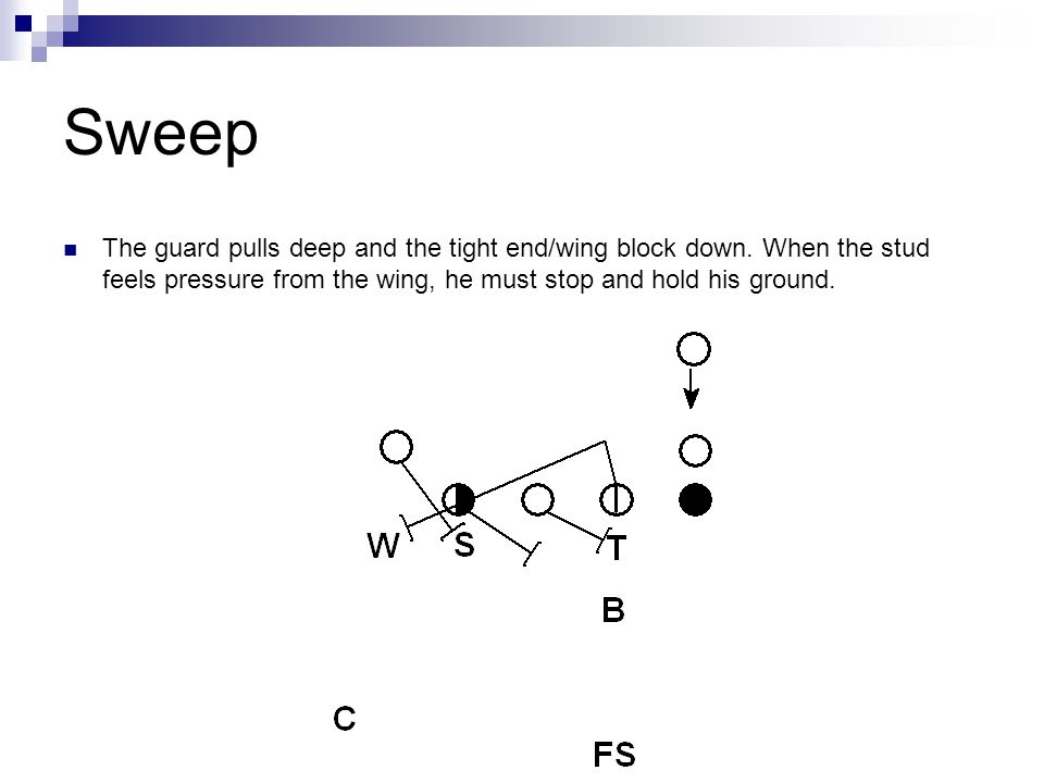 Sweep The guard pulls deep and the tight end/wing block down.