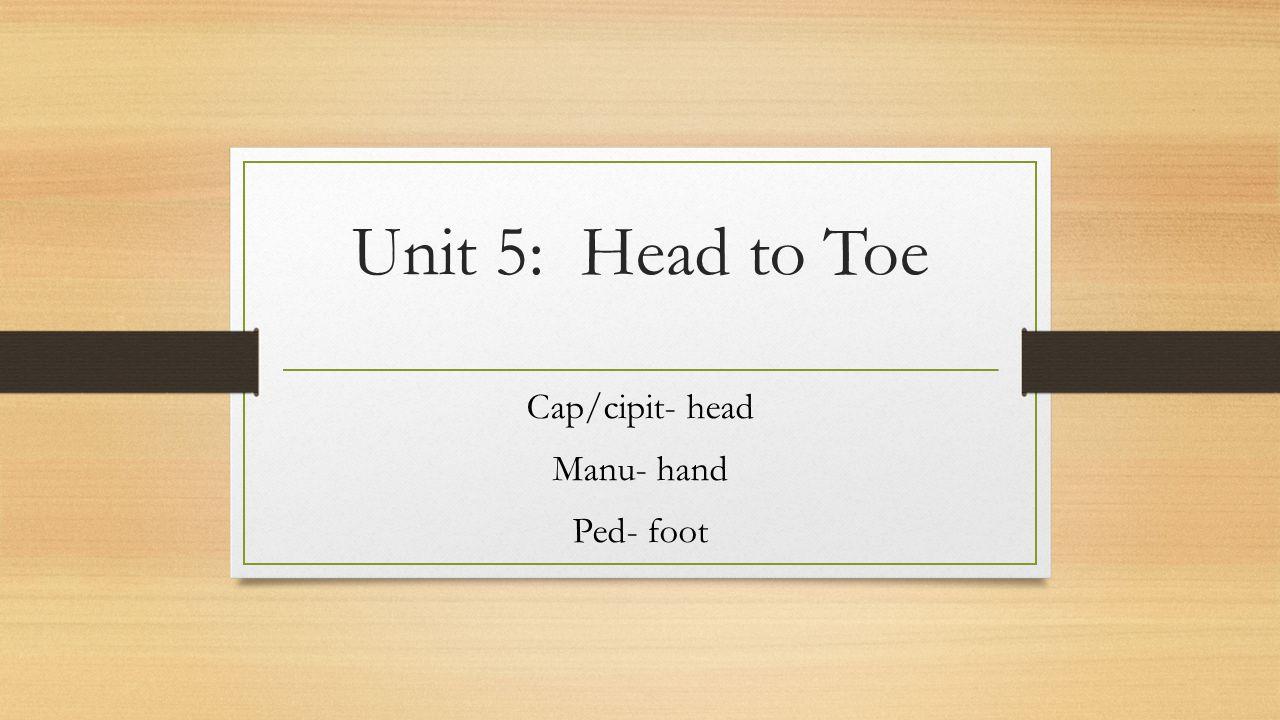 Cap/cipit- head Manu- hand Ped- foot