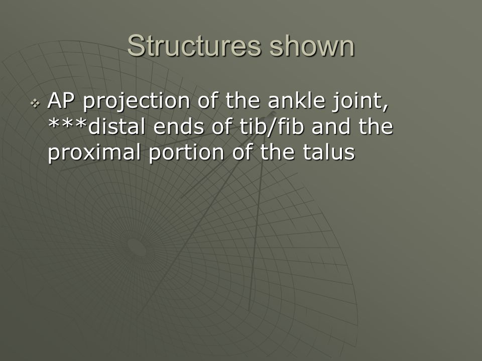 Structures shown AP projection of the ankle joint, ***distal ends of tib/fib and the proximal portion of the talus.