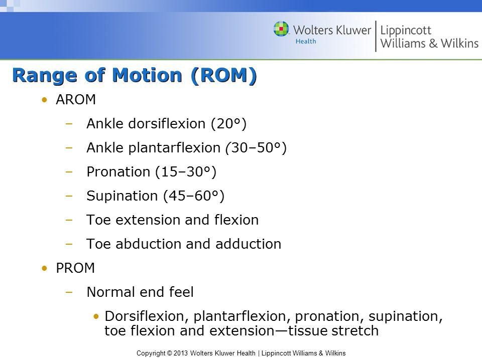 Range of Motion (ROM) AROM Ankle dorsiflexion (20°)