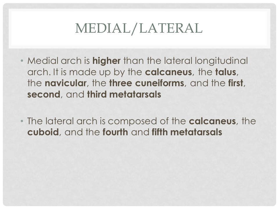 Medial/Lateral