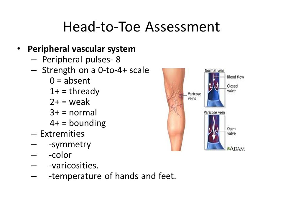 Head-to-Toe Assessment