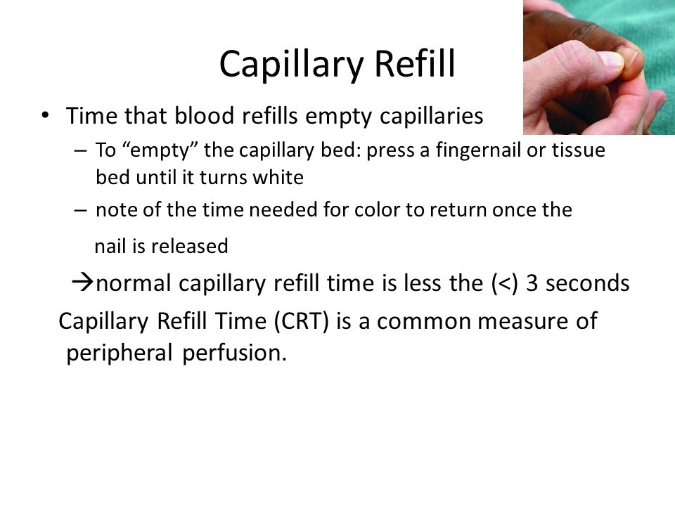 Capillary Refill Time that blood refills empty capillaries