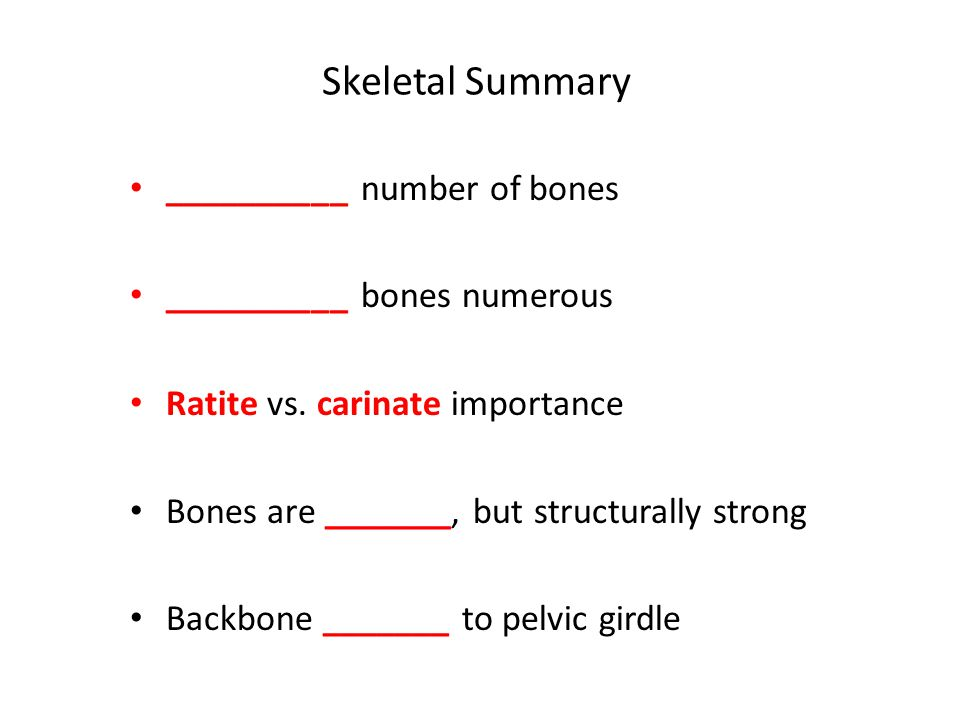 Skeletal Summary __________ number of bones __________ bones numerous