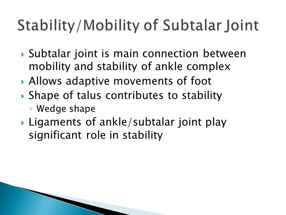 Stability/Mobility of Subtalar Joint