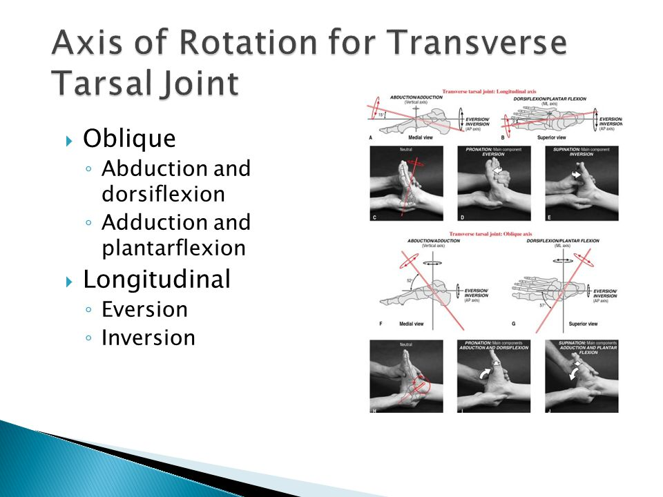 Axis of Rotation for Transverse Tarsal Joint