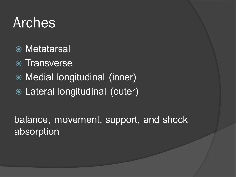 Arches Metatarsal Transverse Medial longitudinal (inner)