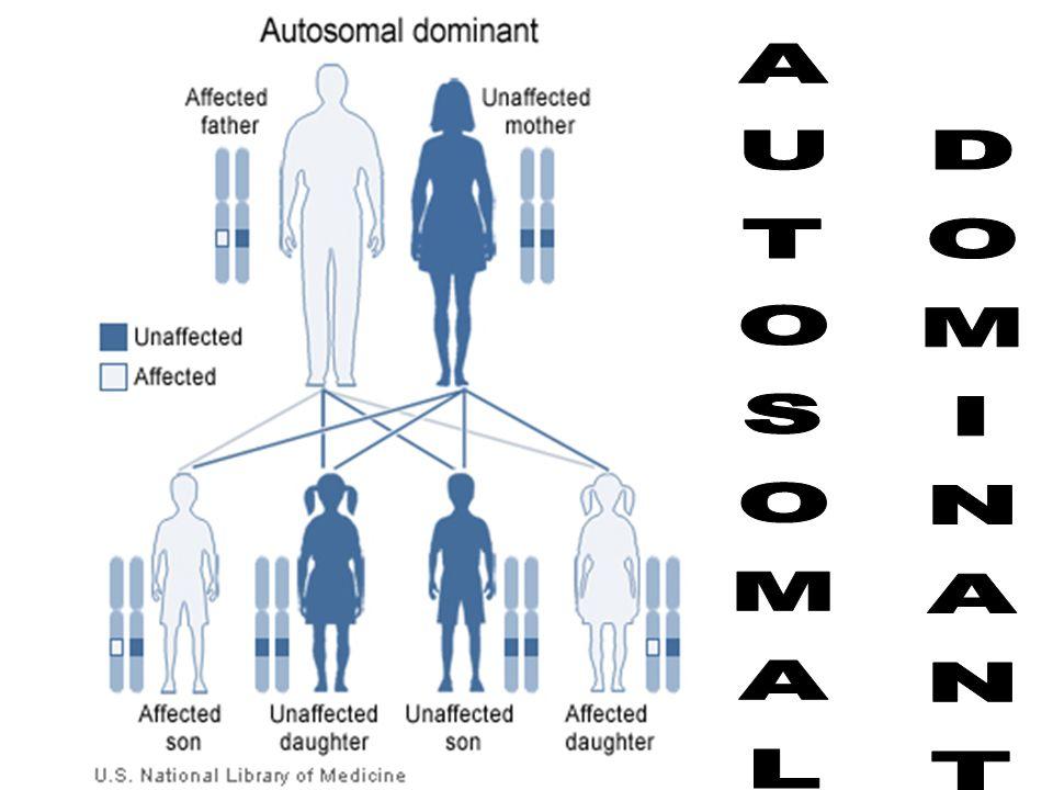 AUTOSOMAL DOMINANT