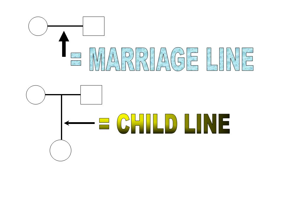 = MARRIAGE LINE = CHILD LINE