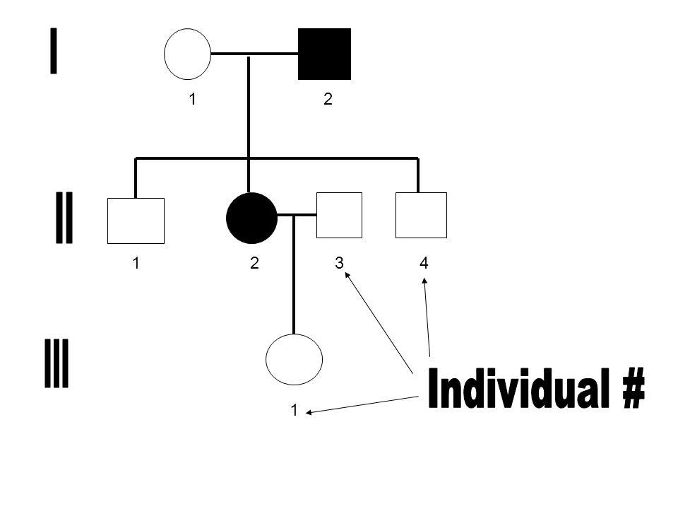 1 2 3 4 I II III Individual #