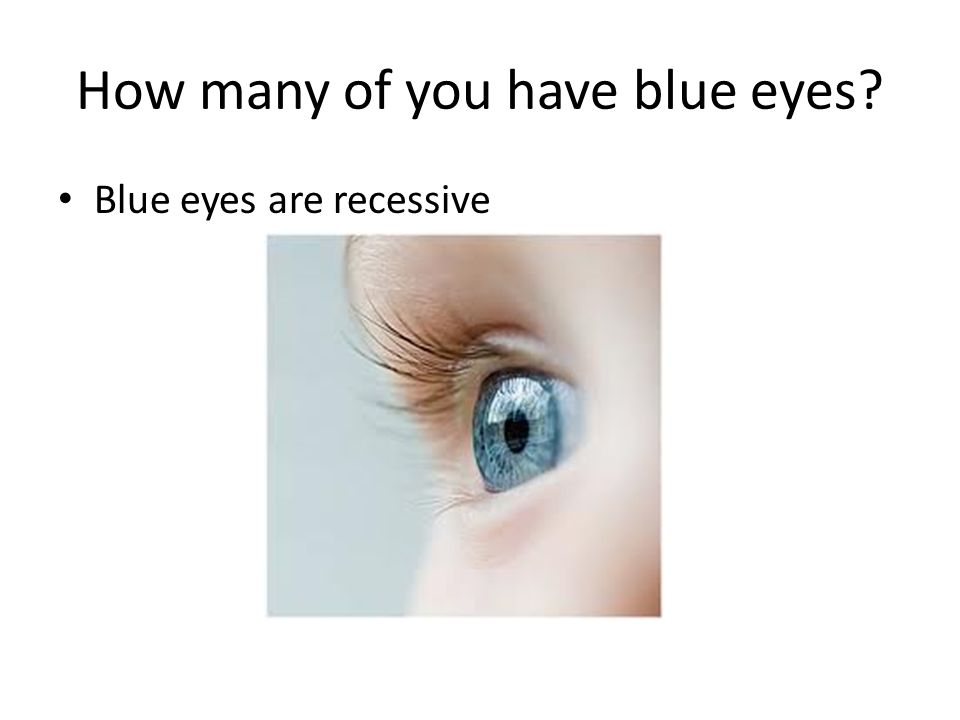 How many of you have blue eyes
