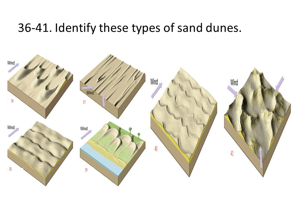 36-41. Identify these types of sand dunes.