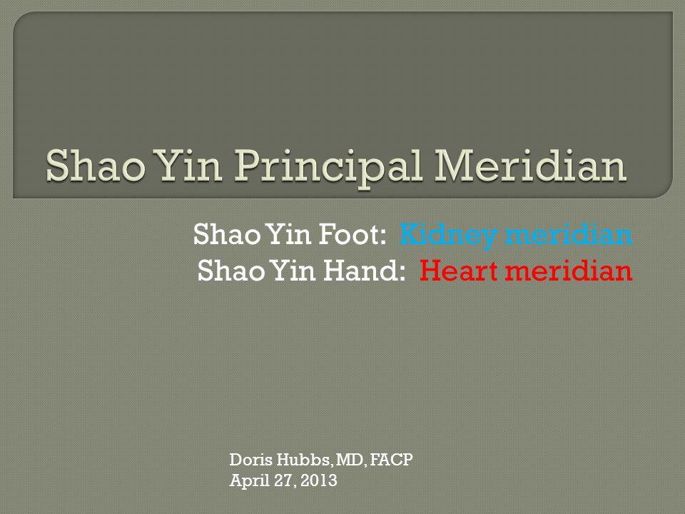 Shao Yin Principal Meridian