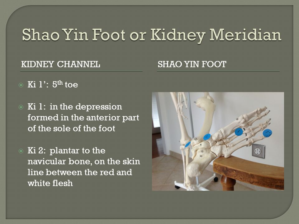 Shao Yin Foot or Kidney Meridian