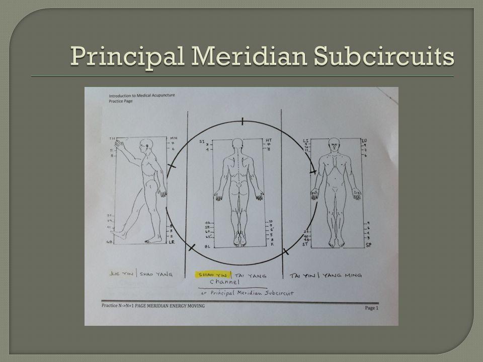 Principal Meridian Subcircuits