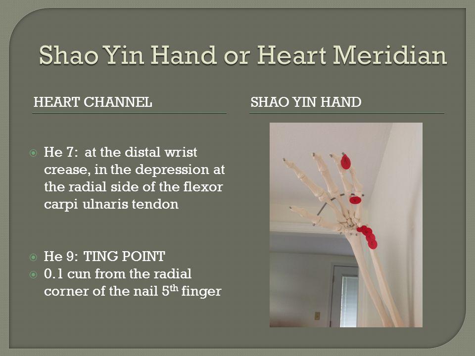 Shao Yin Hand or Heart Meridian