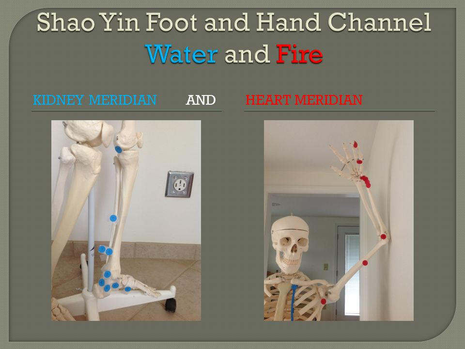 Shao Yin Foot and Hand Channel Water and Fire