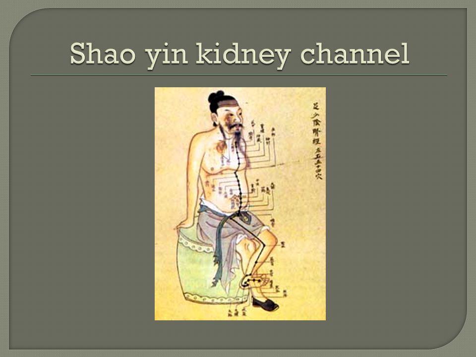 Shao yin kidney channel