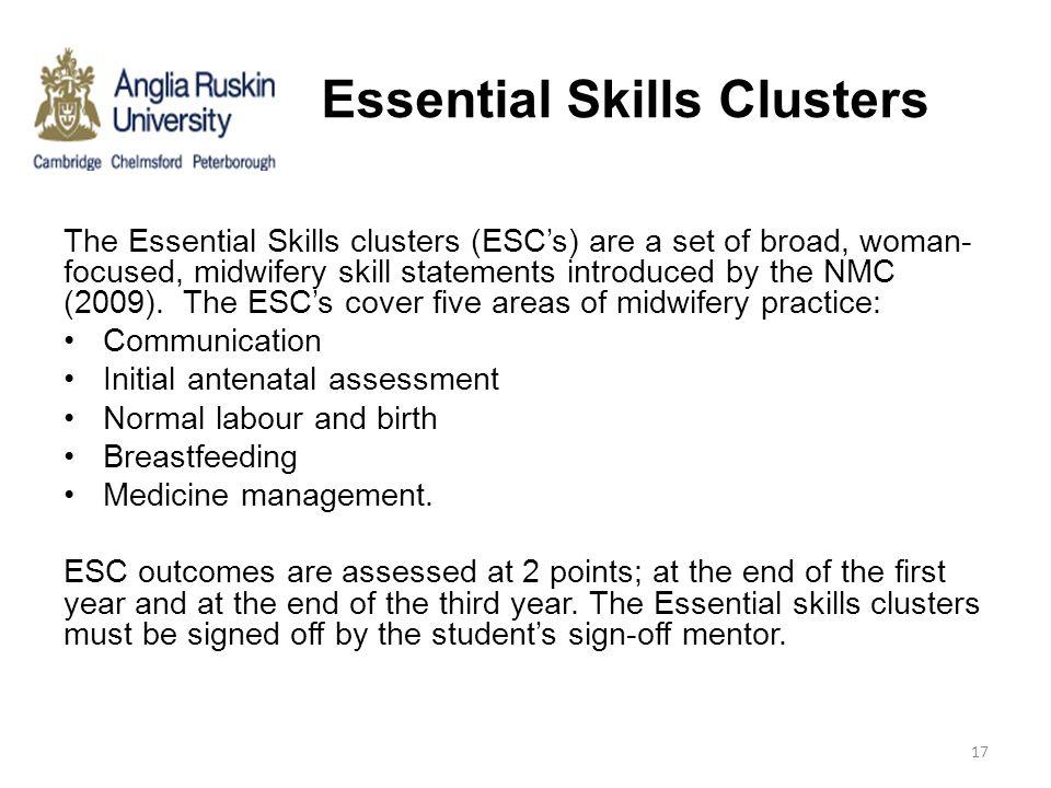 Essential Skills Clusters