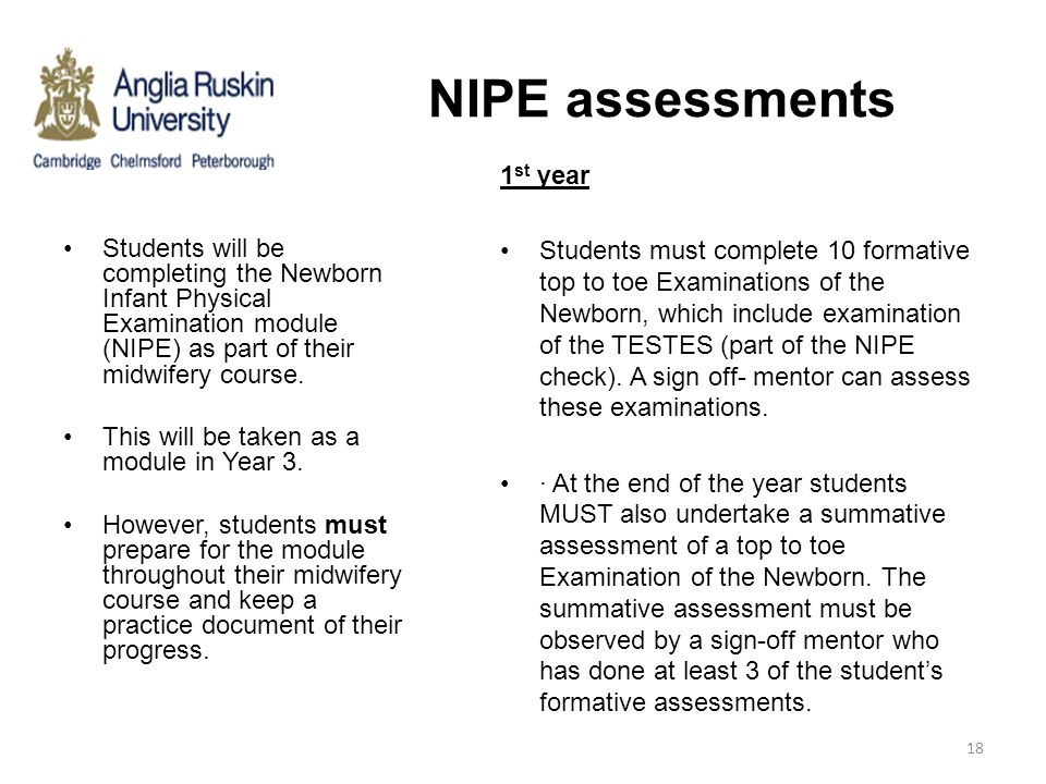 NIPE assessments 1st year