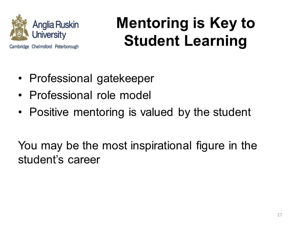 Mentoring is Key to Student Learning