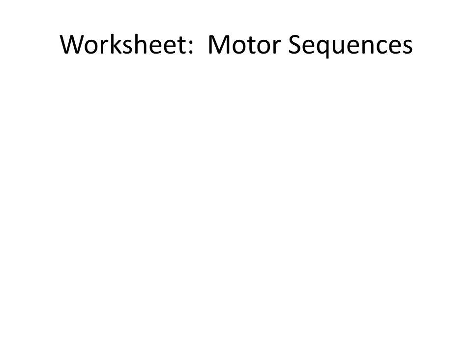 Worksheet: Motor Sequences
