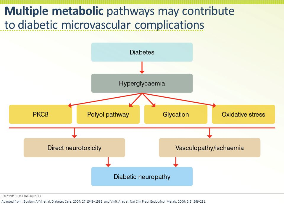 Multiple metabolic pathways may contribute to diabetic microvascular complications