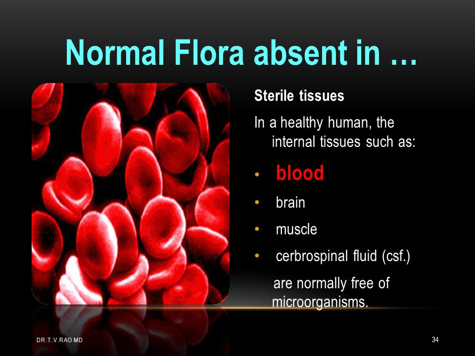 Normal Flora absent in …