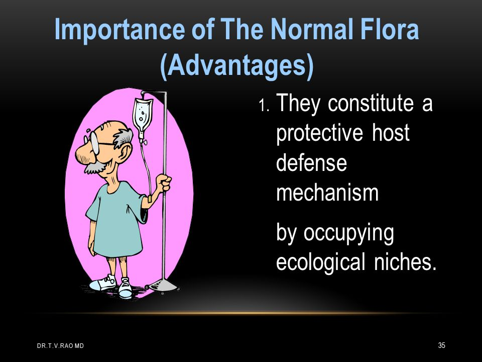 Importance of The Normal Flora (Advantages)