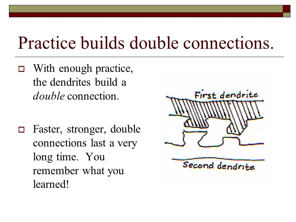 Practice builds double connections.
