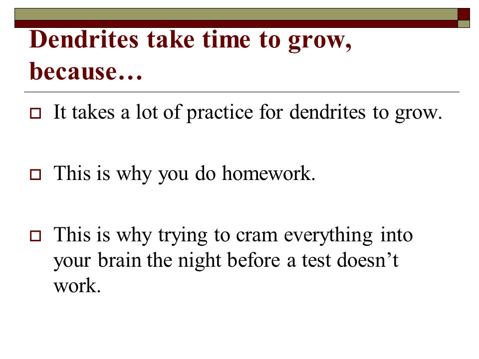 Dendrites take time to grow, because…