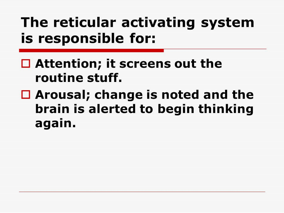 The reticular activating system is responsible for: