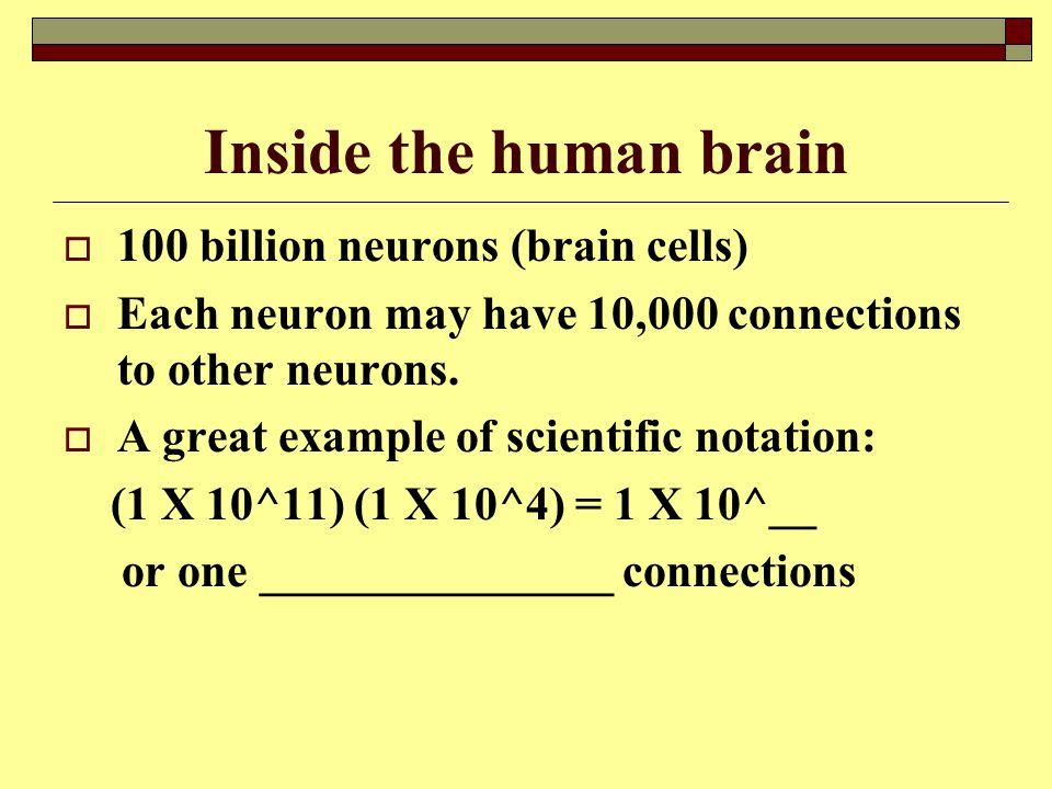 Inside the human brain 100 billion neurons (brain cells)