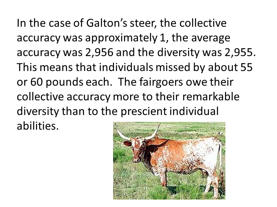 In the case of Galton's steer, the collective accuracy was approximately 1, the average accuracy was 2,956 and the diversity was 2,955.