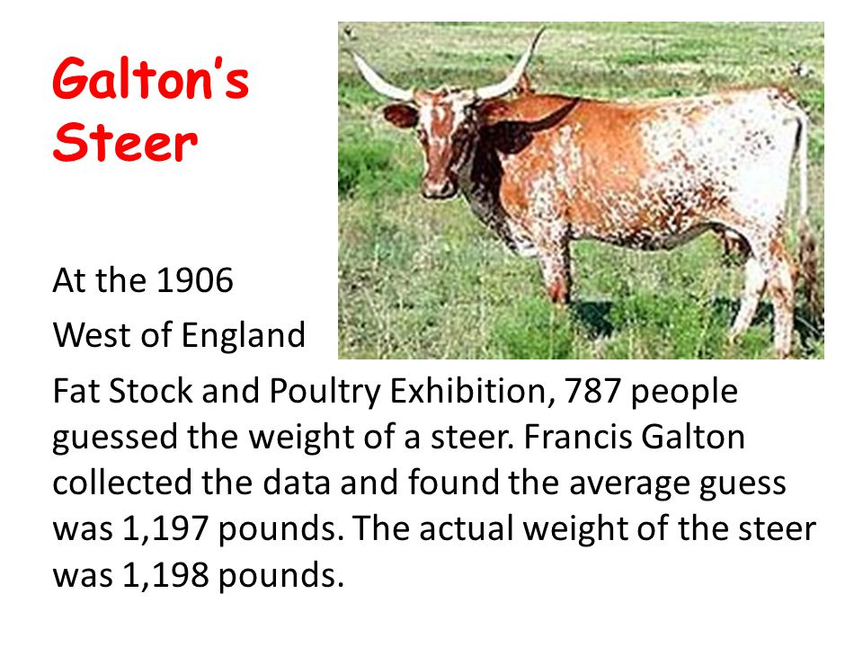 Galton's Steer