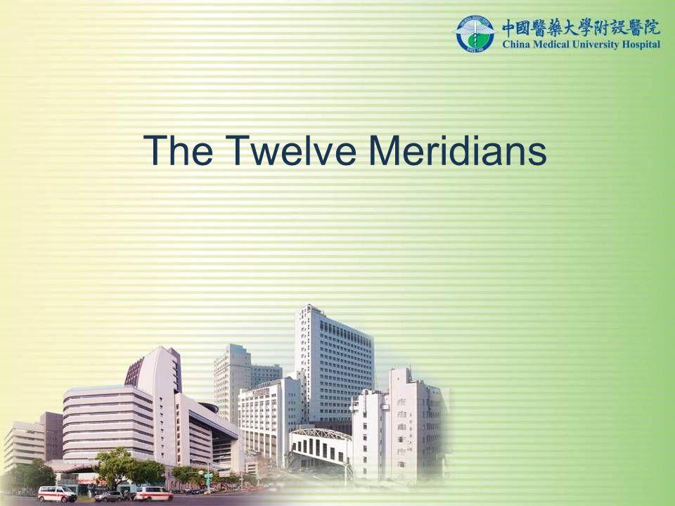 The Twelve Meridians