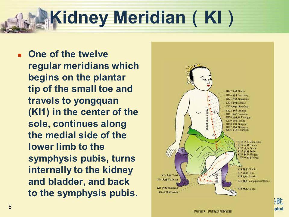 Kidney Meridian(KI)