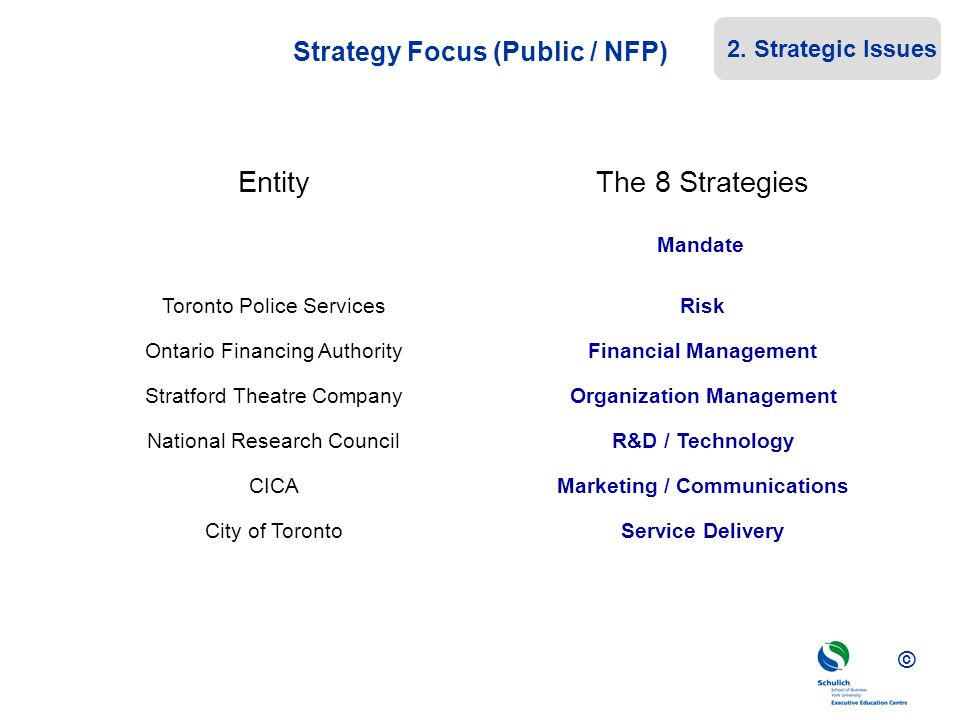 Strategy Focus (Public / NFP)