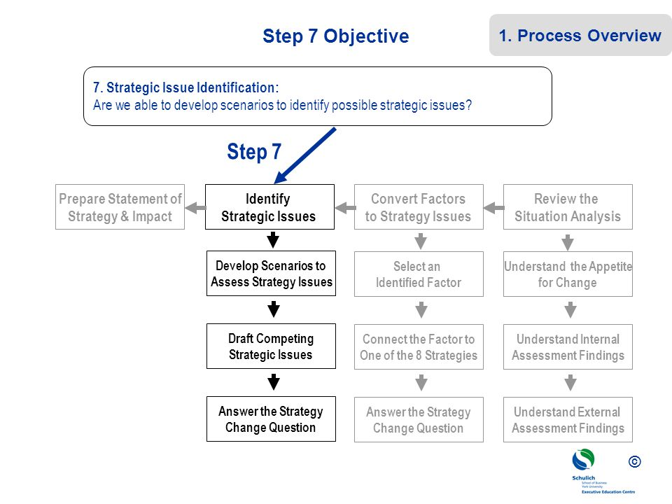 Assess Strategy Issues Understand the Appetite