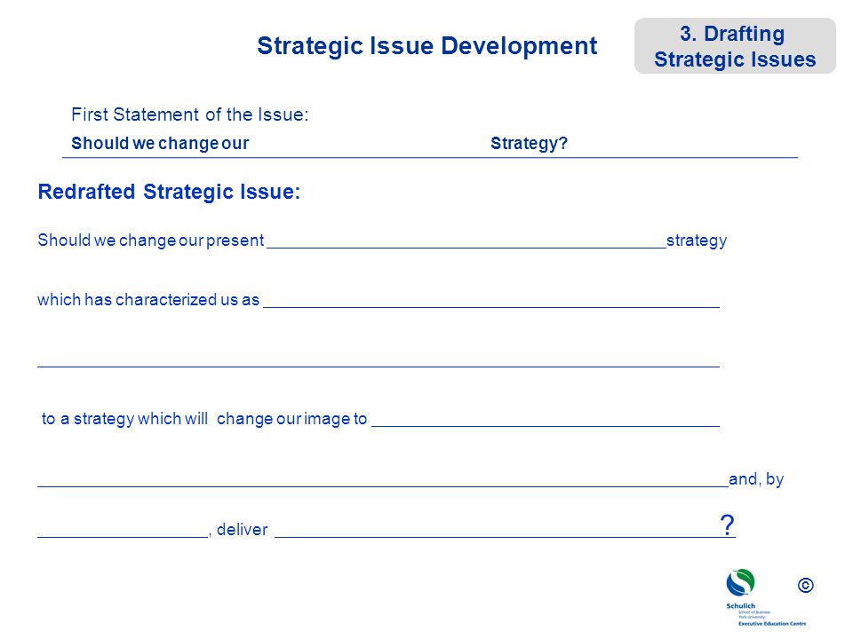 Strategic Issue Development